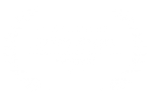 OFFICIAL SELECTION - Buffalo Niagara International Film Festival - 2017 (1)